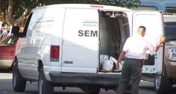 semefo1-620x330
